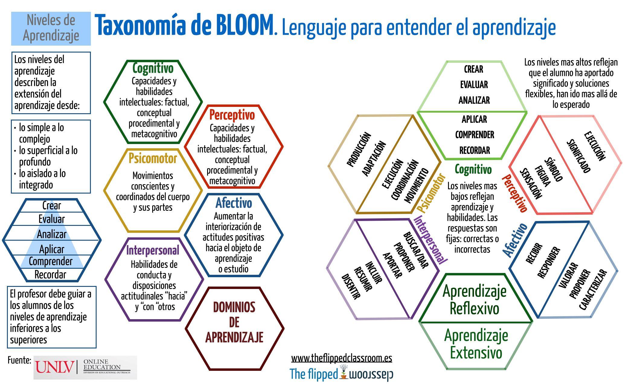 bloom.001