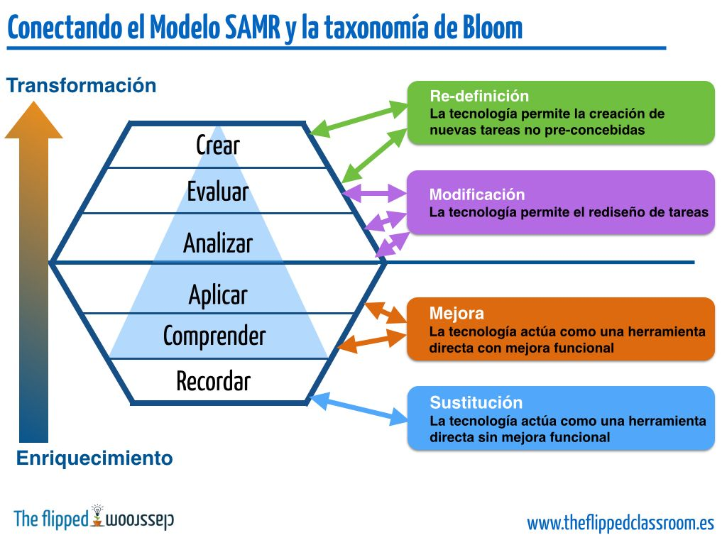 samr bloom.001