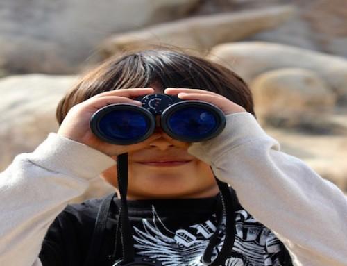 Aprendamos el arte de observar