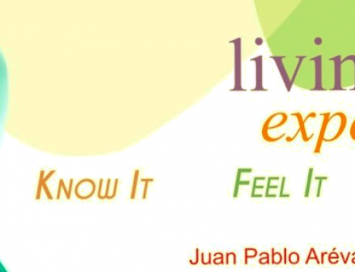 "Living the experience: know it, feel it, learn it – Juan Pablo Arévalo (Colegio Salesiano ""San Agustín"" de Linares – Jaén)"