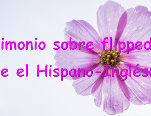 Testimonio sobre flipped desde el Hispano-Inglés(II)