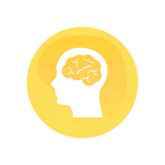 Neuroludolexia Taller Objetivos